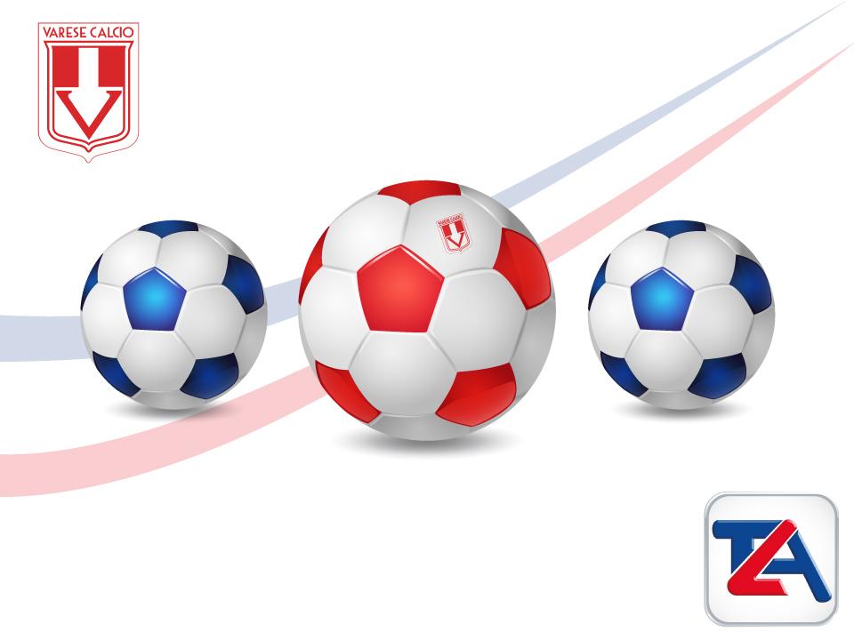 Sponsor Varese Calcio